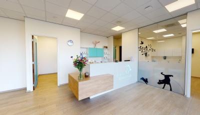 Dierenziekenhuis Veenendaal 3D Model
